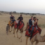 Camel Ride in Sand Dunes